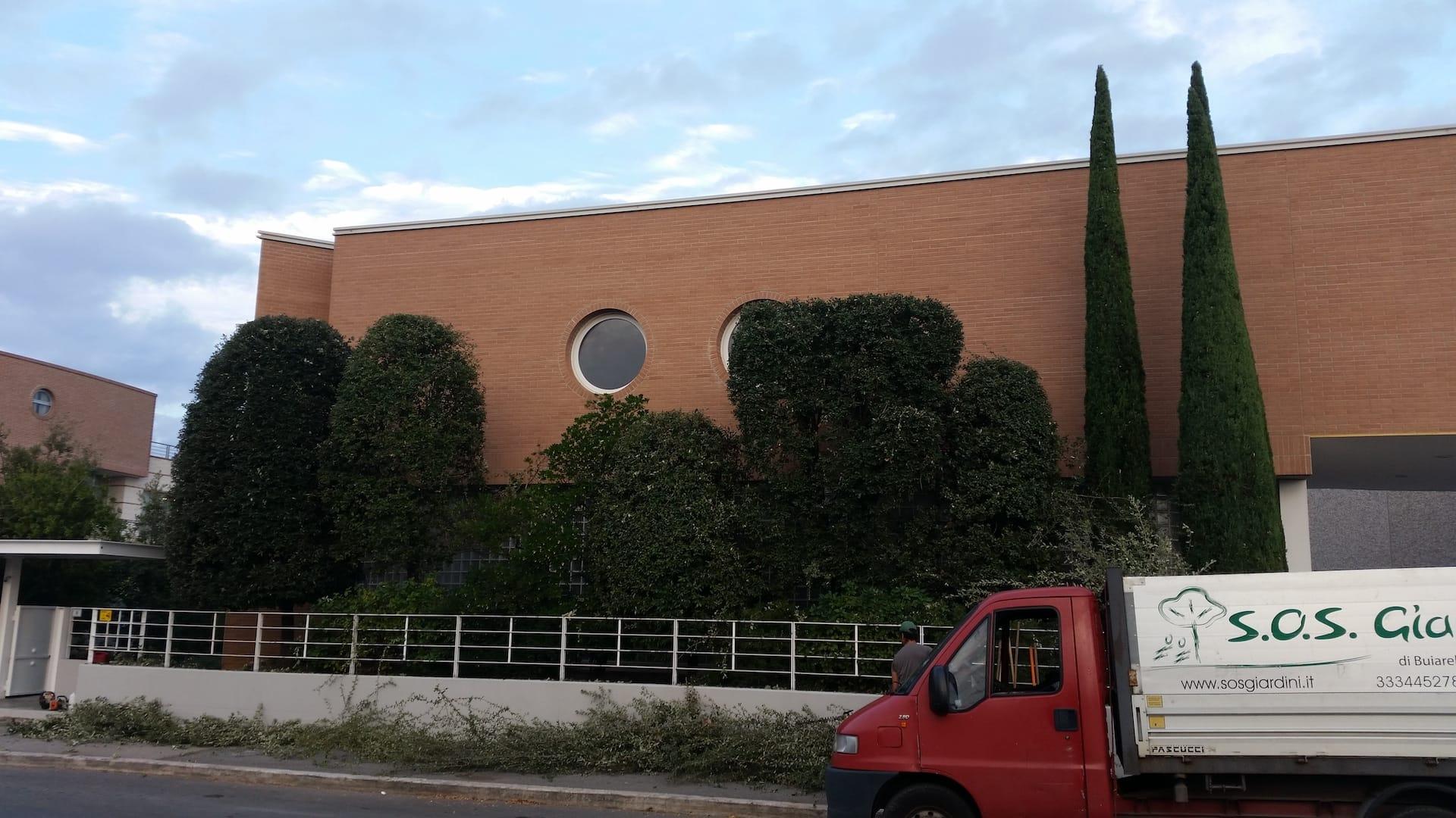 Potatura di arbusti e sagomatura cipressi